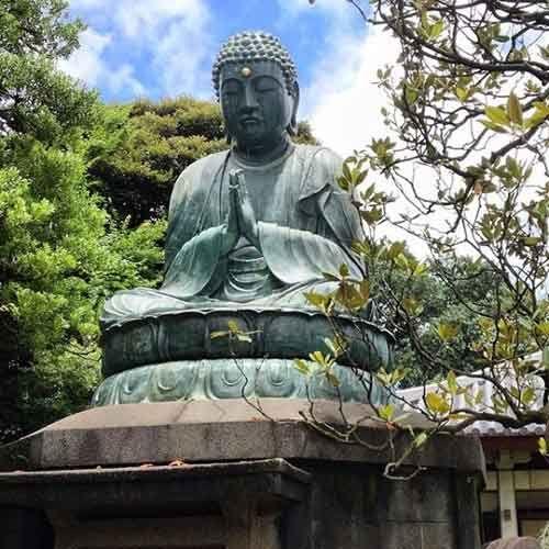 Asian mystique tokyo