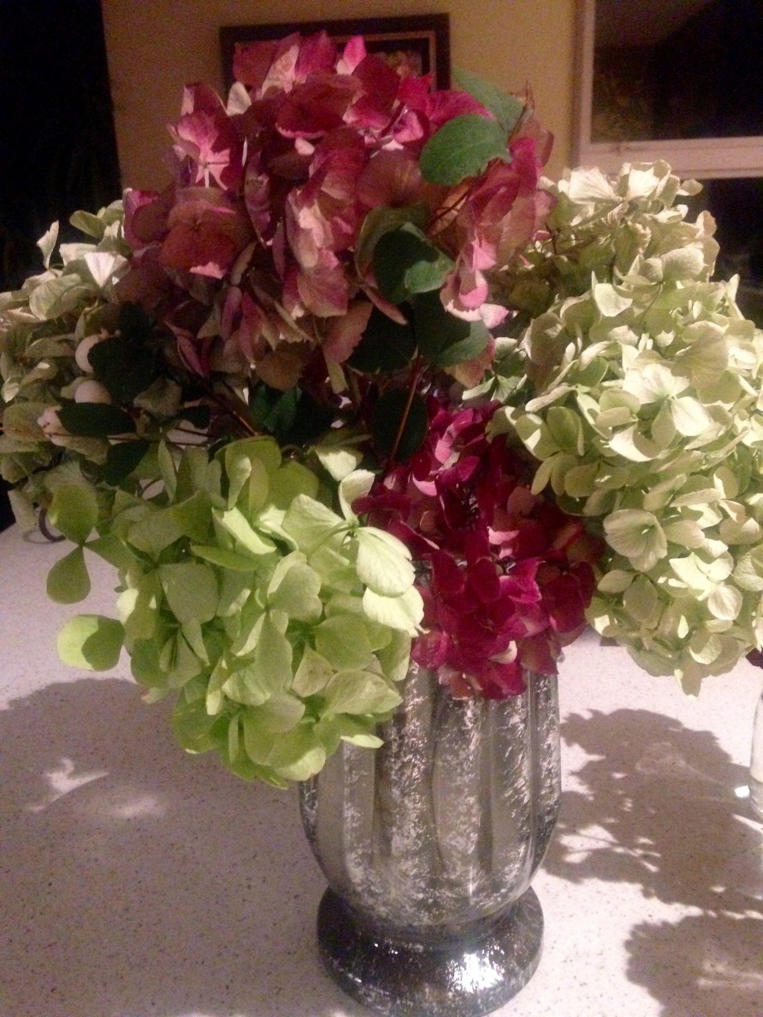 Hydrangeas. I love them.