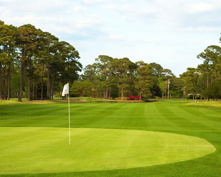 Beachwood Golf Club North Myrtle Beach Sc Myrtle Beach Golf North Myrtle Beach Golf Courses