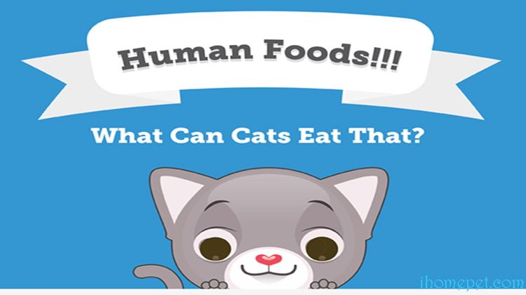 Human Foods
