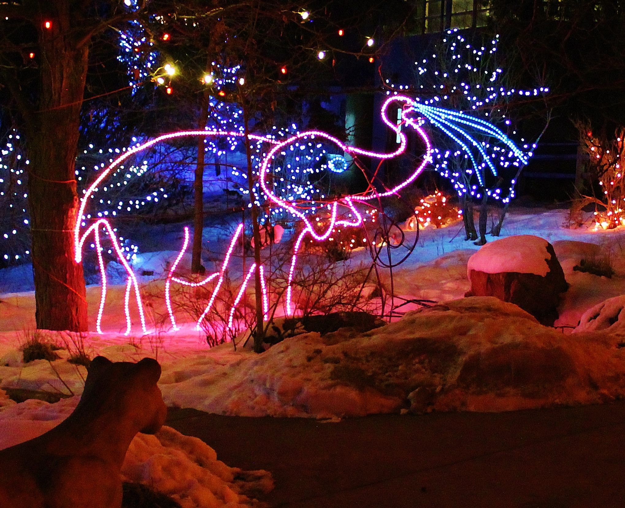 Colorado Springs Christmas Lights 2021 Best Places To See Christmas Lights Around Colorado Springs Cheyenne Mountain Zoo Cheyenne Mountain Colorado Christmas