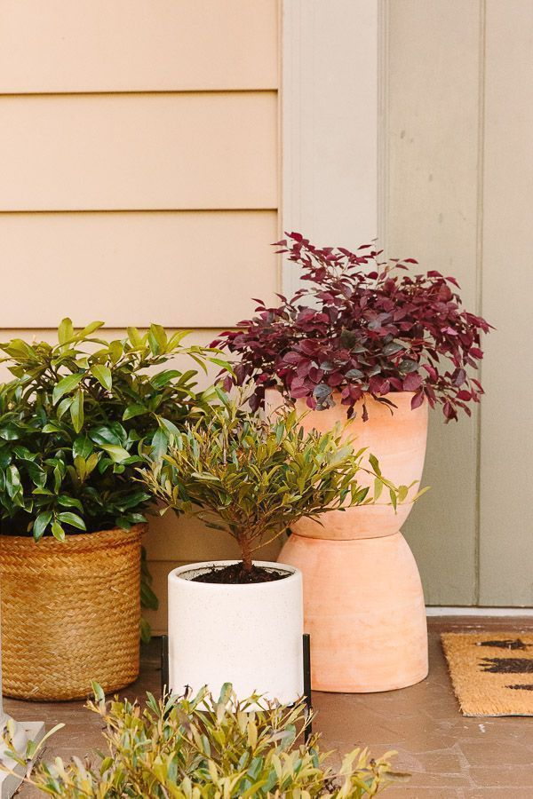 That Plant Life: Easy Spring Decorating for a Small Porch (with Plants) + DIY Totem Planters #smallporchdecorating