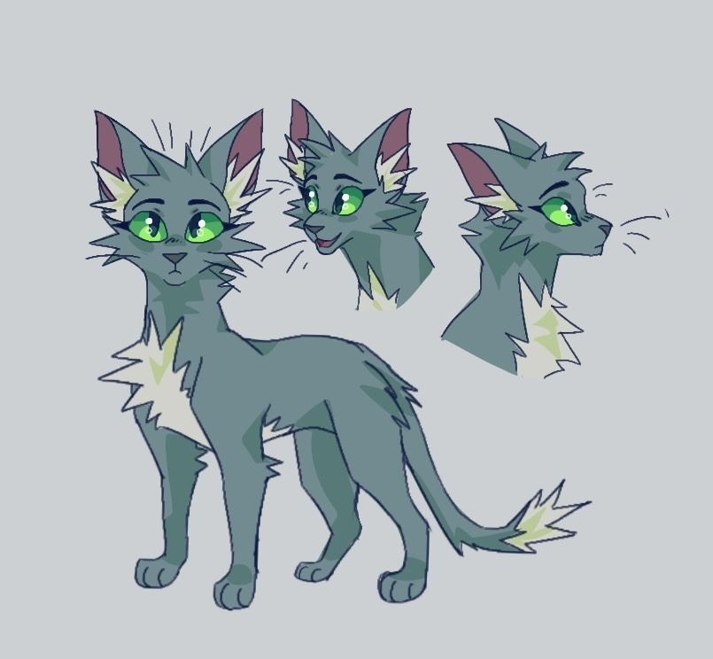 Not My Oc Looks Legit Tho With Images Warrior Cat Oc Warrior