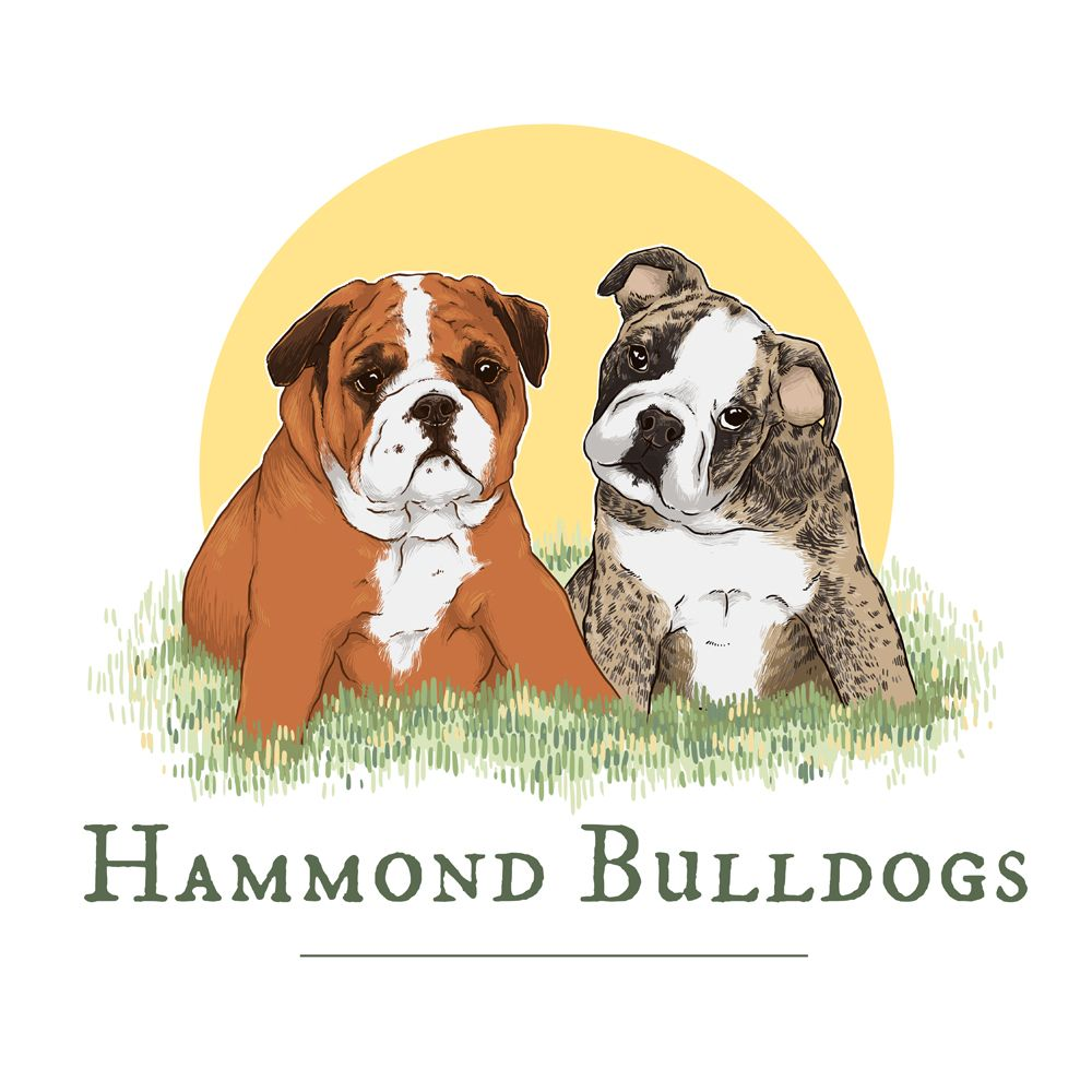 Hammond Bulldogs Logo Conkberry Art And Design For People Who