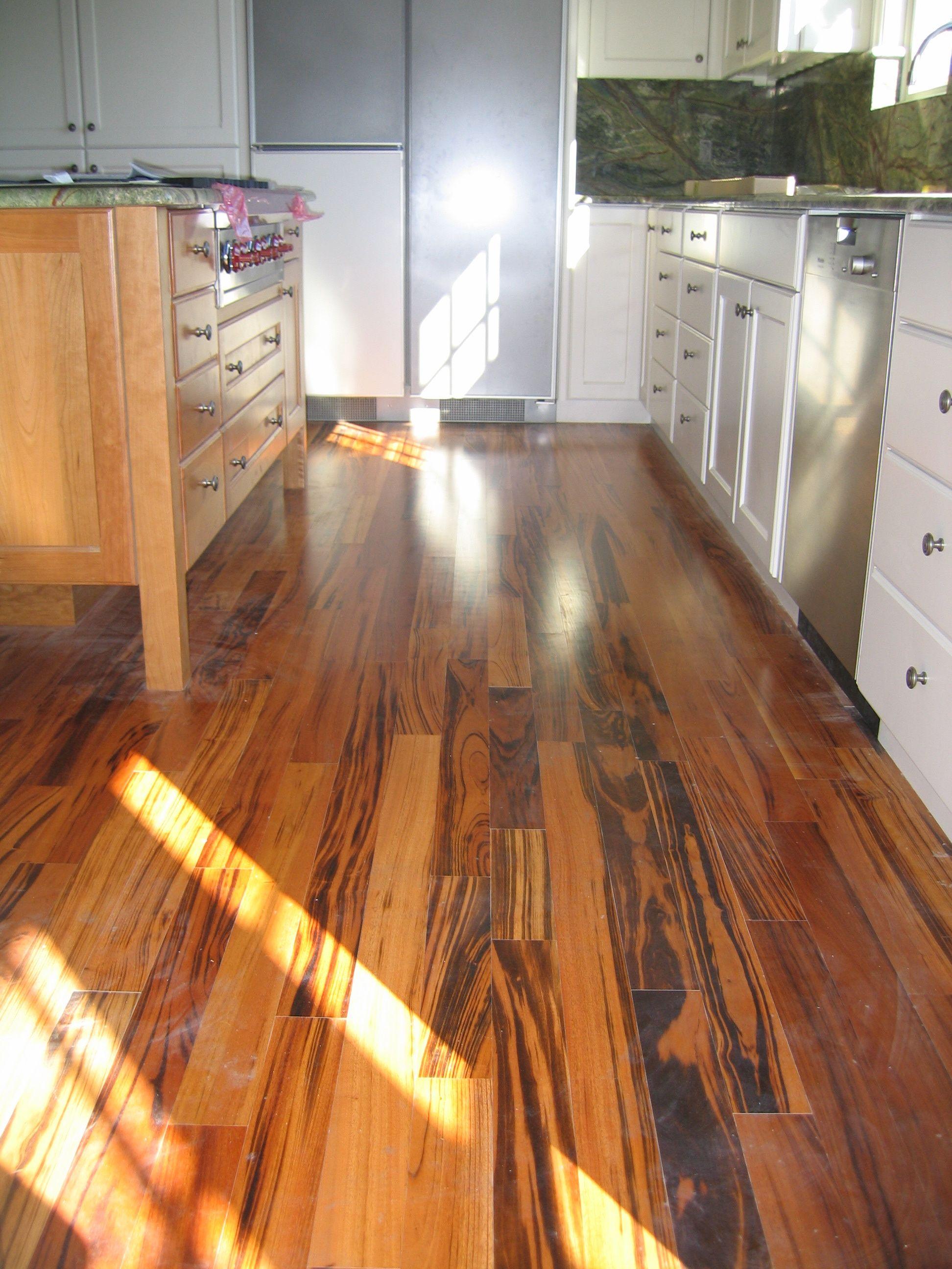 Modern kitchen with gorgeous stone countertops premium stainless