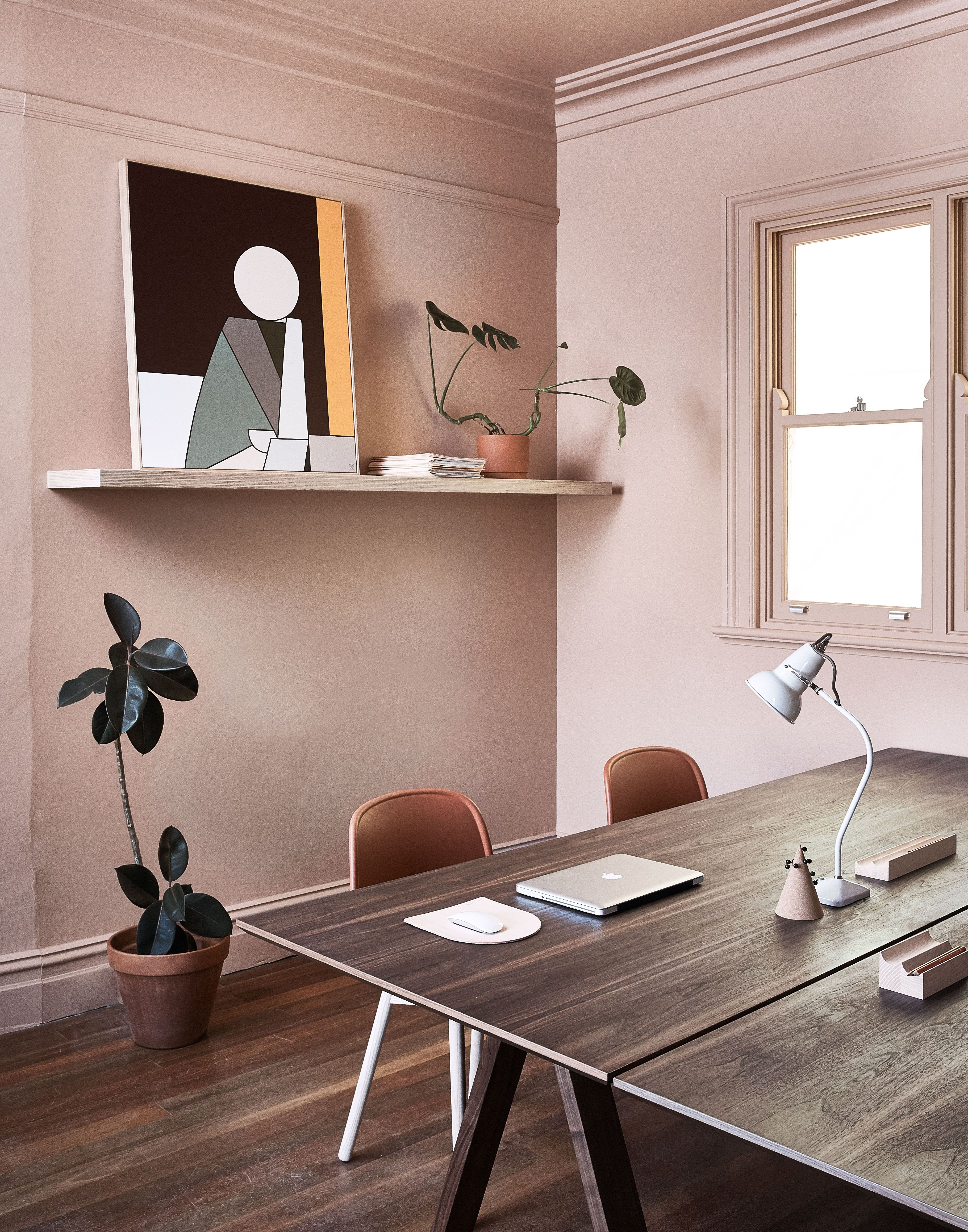 Interior design firm we are triibes surry hills office features dusty pink walls contemporary furniture and indoor greenery