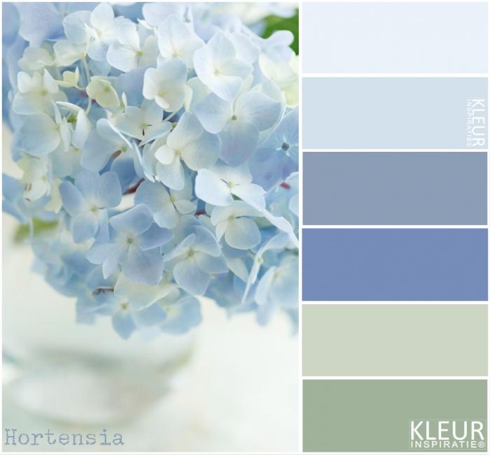 Hortensia kleurenpalet zacht blauw en groen for Kleurenpalet interieur