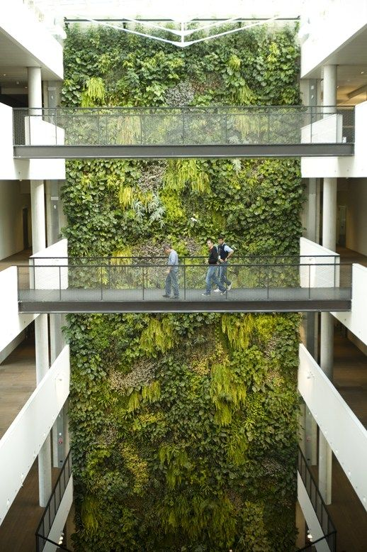 Indoor vertical garden By SUNDAR ITALIA