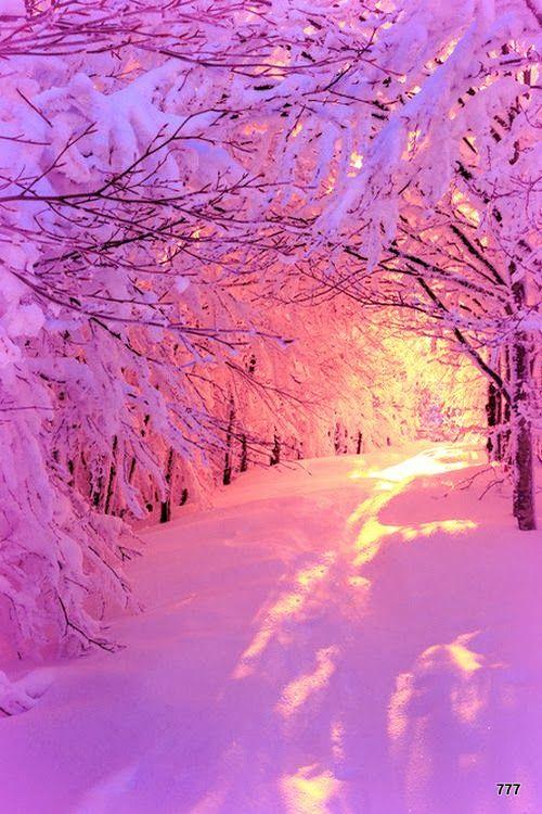 Lumi re rose du soleil levant sur la for t enneig e belles images en 2018 pinterest - Palpitations le soir au coucher ...