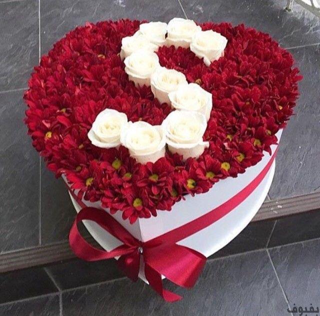 حرف S في قلب 7