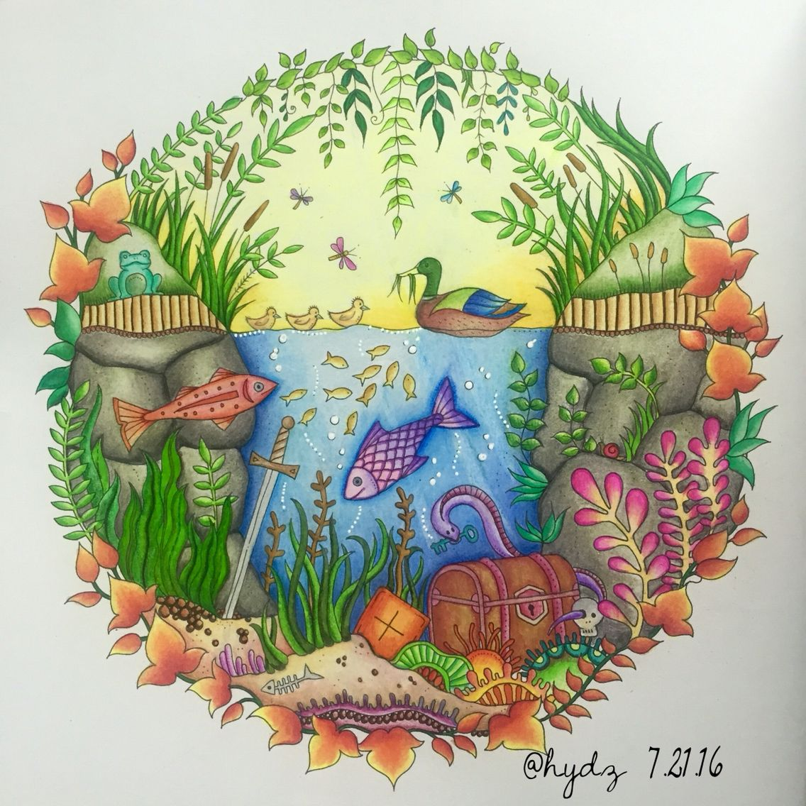 Enchnated Forest By Johanna Basford Used Colored Pencils