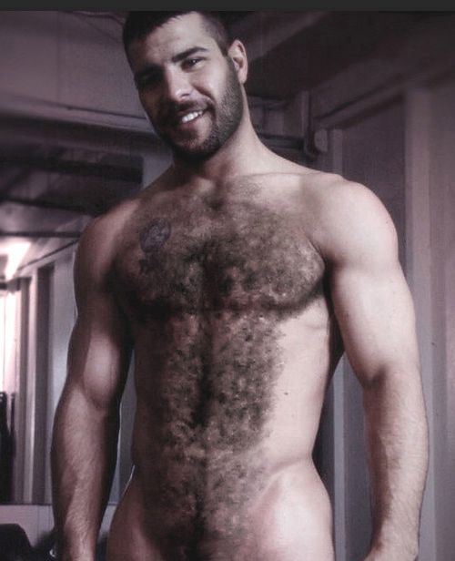 Hairy men videos tumblr