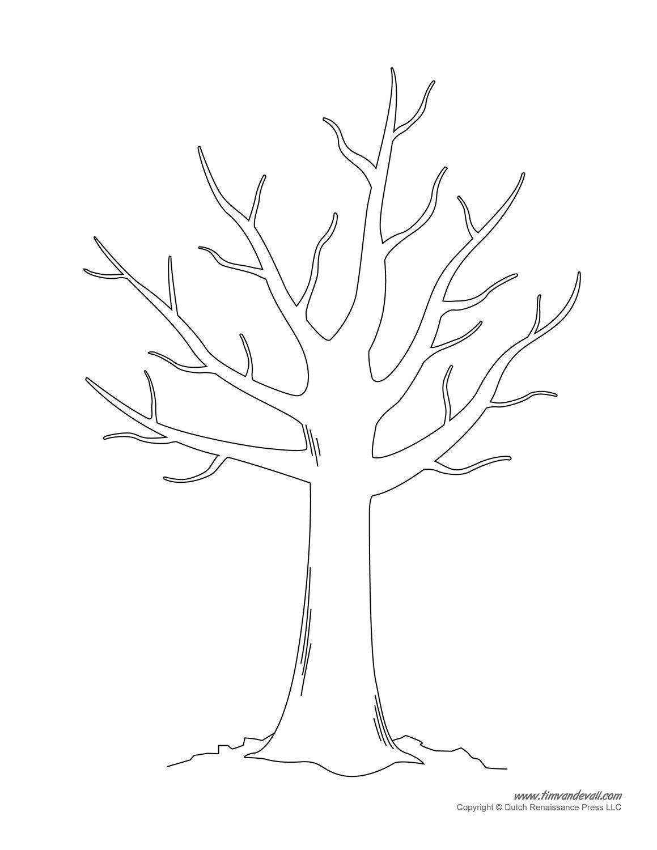 baum malvorlage stammbaum  malvorlage 2021
