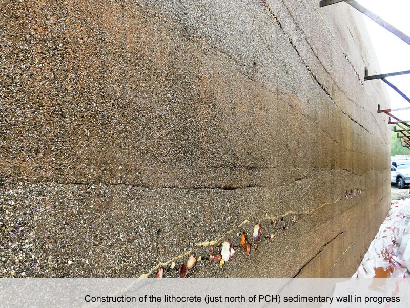 Machado Lake And Wilmington Drain Concrete Wall Poured Concrete Concrete