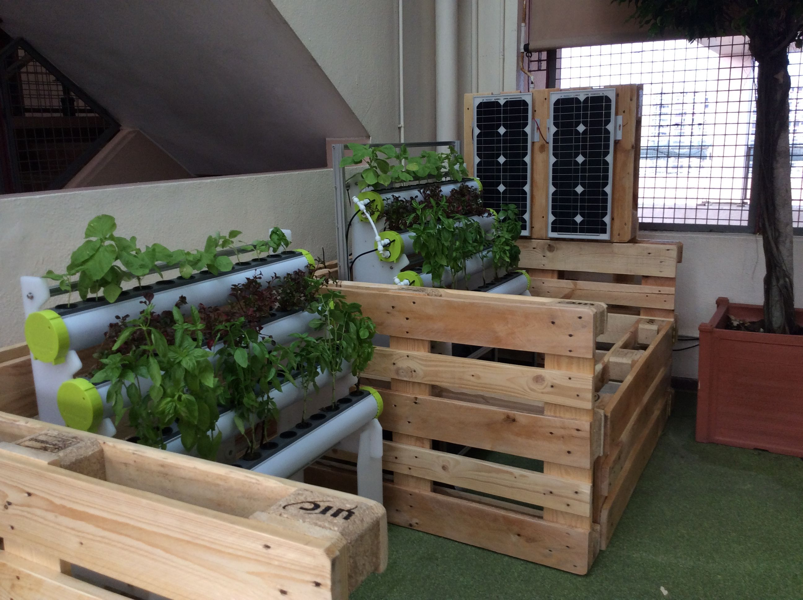 the solar powered hydropro hydroponics and aquaponics systems