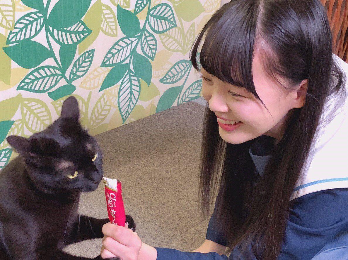 Stu48 On Twitter 瀬戸内少女応援団 Ciaoちゅ るが大活躍 かわいい猫