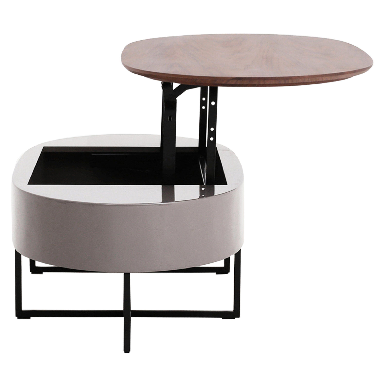 Wade Logan Schiller Lift Top Coffee Table Reviews Wayfair Coffee Table Lift Top Coffee Table White Coffee Table Modern [ 1760 x 1760 Pixel ]