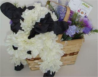 Pin By Jeannette Merced On Flower Animals Flower