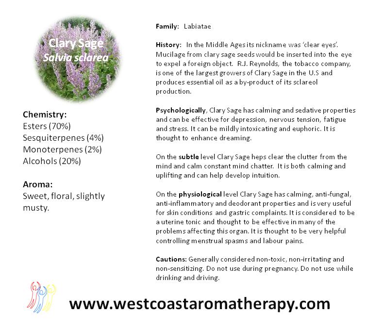 Clary Sage Healing scents, Sage seeds, Herbalism