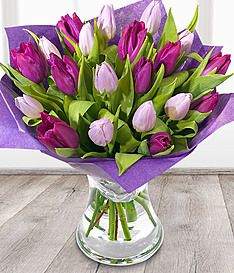 Simply Tulips Tulips In Vase Get Well Flowers Tulips
