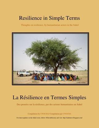 Resilience in simple terms   La Résilience en Termes Simples 7b75714e5601
