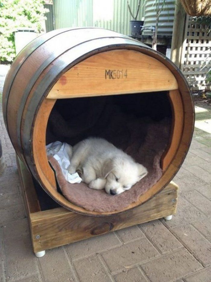 Turn A Wine Barrel Into A Dog Bed Cool Dog Houses Dog Houses