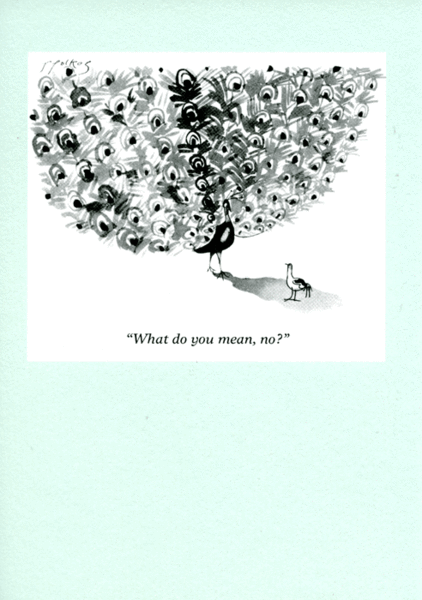 What do you mean no creative writing pinterest male peacock humorous greeting card by punch what do you mean no funny card by punch about a male peacock from a range of cards that feature cartoons from the famous m4hsunfo