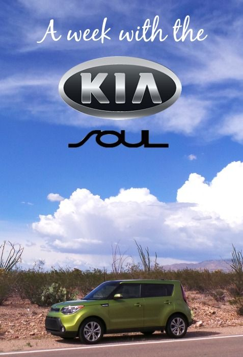 2014 #Kia #Soul: Perfect for a girls' road trip http://www.vivakia.com/all-inventory/index.htm?search=soul