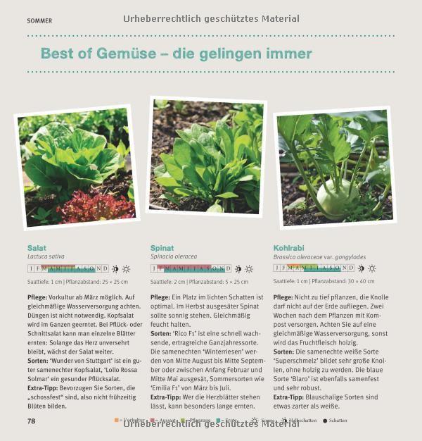 garten basics - gärtnern für anfänger gu garten extra: amazon.de, Gartengerate ideen