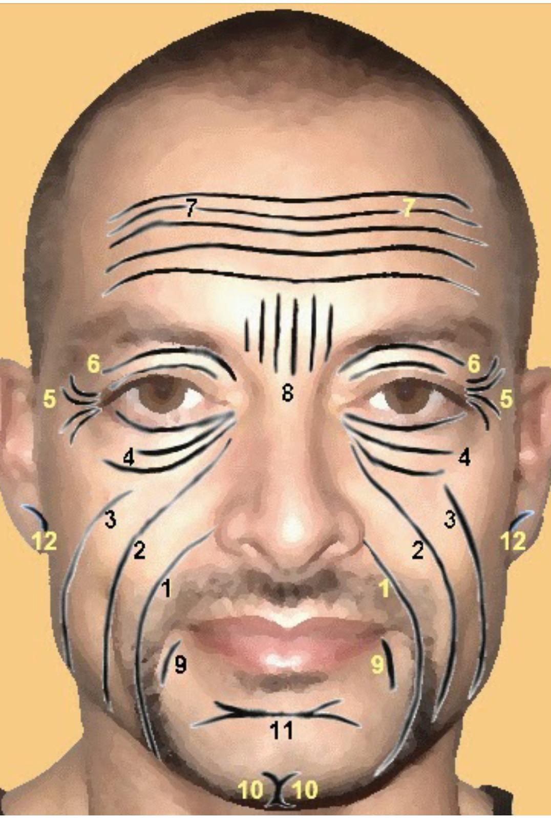Los Hombres Tambien Utilizan Los Ejercicios Faciales Para Relajar Tensiones Entrecejo Estrés Ocular Tensión Mandibular Dol Salud Arrugas Lectura Del Rostro