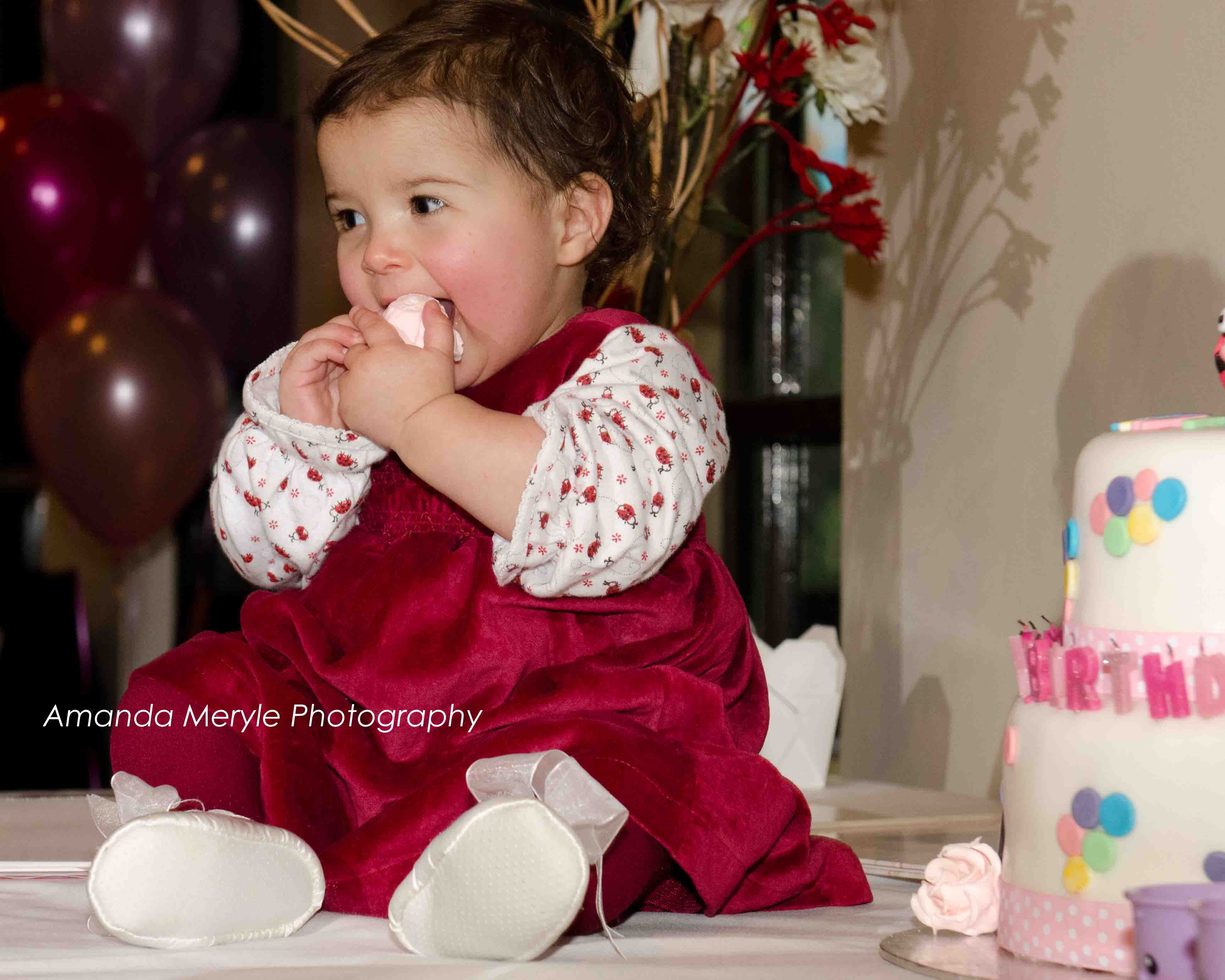 Family and Children's Photography, Birthday