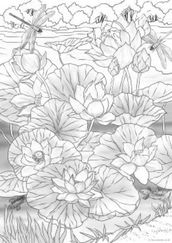 Water Lilies Printable Adult Coloring Page From Favoreads