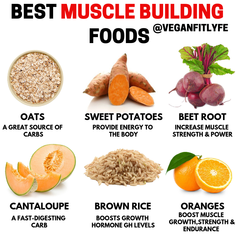 plant based diet for muscle building
