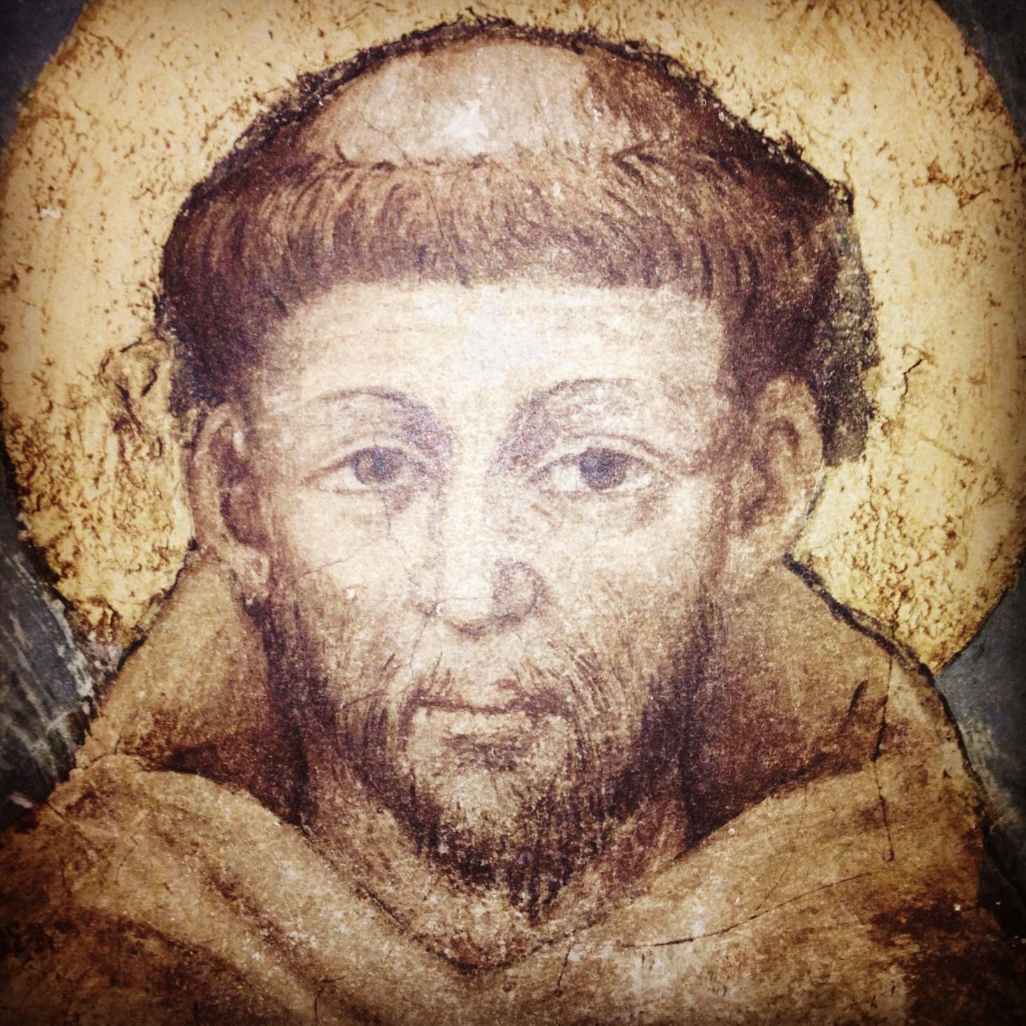 St. Francis of Assisi, pray for us