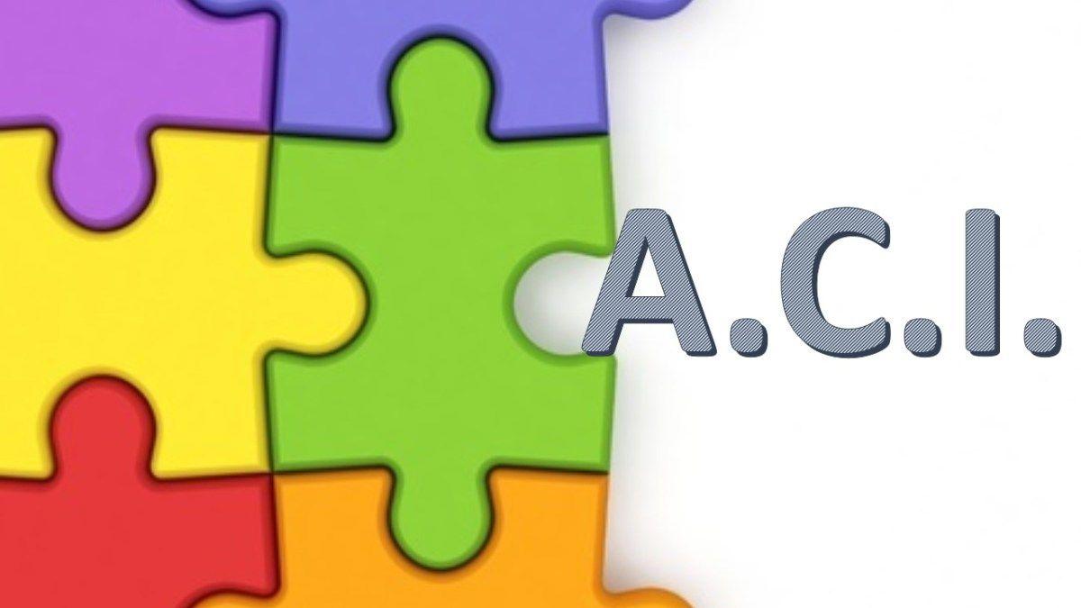 Plantilla ACI adaptación curricular con estándares de aprendizaje ...