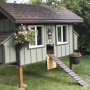 Chicken Coop Paint Colors Recherche Google Cute Chicken Coops Chickens Backyard Building A Chicken Coop