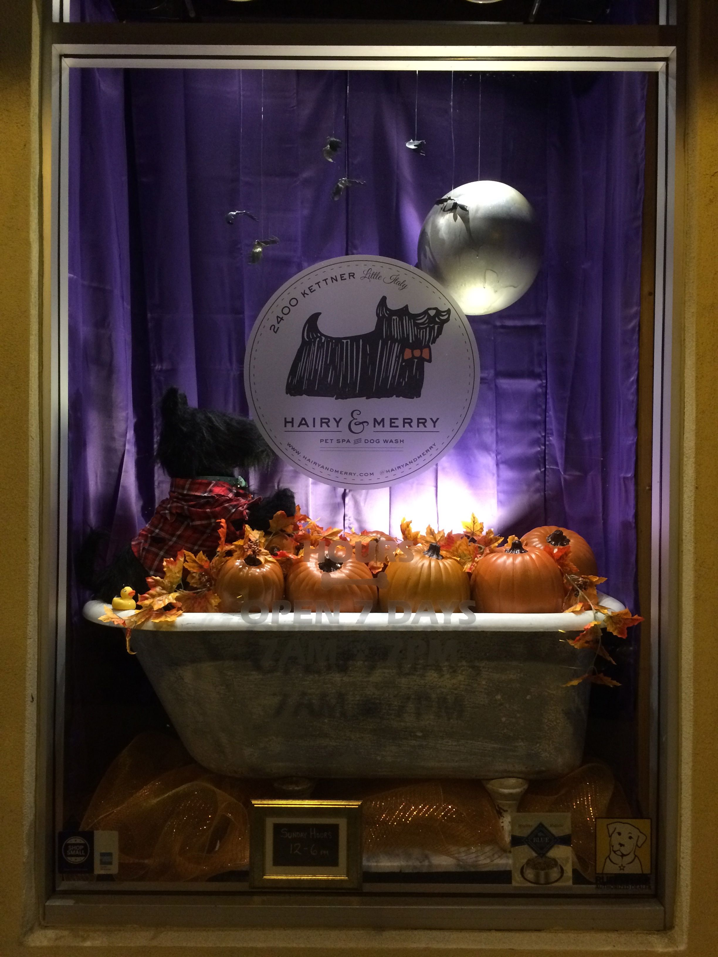 Front Window Display Is Spooky For Howl O Ween Merry Front Windows Birthday