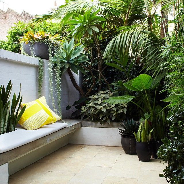 15 Tiny Outdoor Garden Ideas For The Urban Dweller: Tropical Inner City Courtyard By Thinkoutsidegardens.com