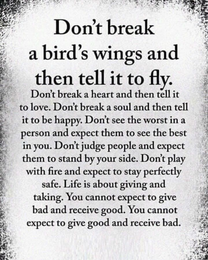 Afbeelding Kan Het Volgende Bevatten De Tekst Don T Break A Bird S Wings And Then Tell It To Aly Don T Break A H Life Quotes Meaningful Quotes Wisdom Quotes