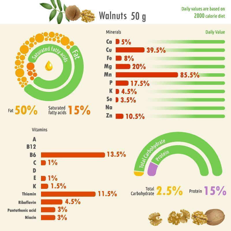 20 Different Types of Nuts - Do You Know Them All? #walnutsnutrition Walnut nutrition facts chart #walnutsnutrition 20 Different Types of Nuts - Do You Know Them All? #walnutsnutrition Walnut nutrition facts chart #walnutsnutrition 20 Different Types of Nuts - Do You Know Them All? #walnutsnutrition Walnut nutrition facts chart #walnutsnutrition 20 Different Types of Nuts - Do You Know Them All? #walnutsnutrition Walnut nutrition facts chart #walnutsnutrition 20 Different Types of Nuts - Do You #walnutsnutrition