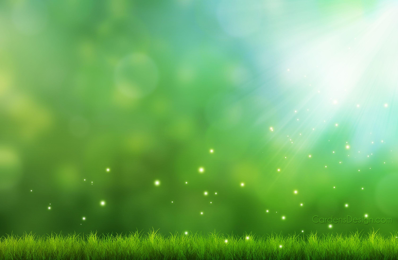 Wallpaper Nature Desktop Landscape Grass Bokeh Sun Beams