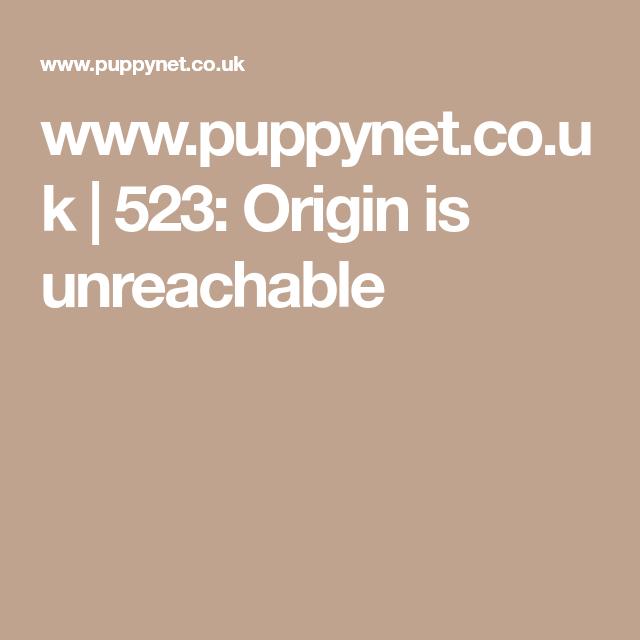 Www Puppynet Co Uk 523 Origin Is Unreachable Bullmastiff Puppies For Sale Bull Mastiff Puppies Puppies For Sale