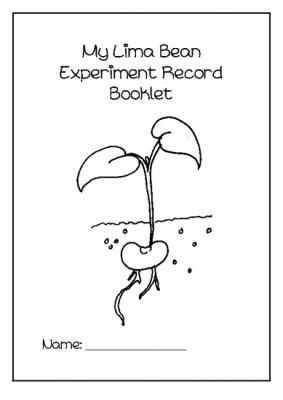 Lima Bean experiment booklet from Little Learners- little