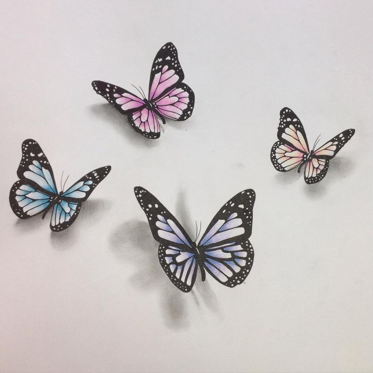 Photo of 3D butterfly drawing … #butterfly #drawing