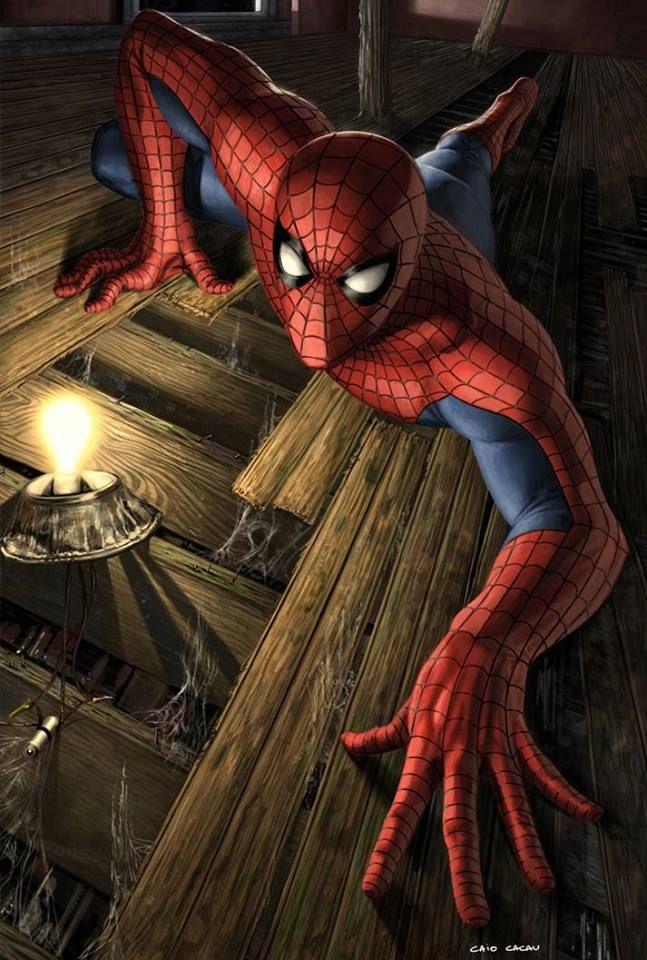 Spider-Man Art by Caio Cacau