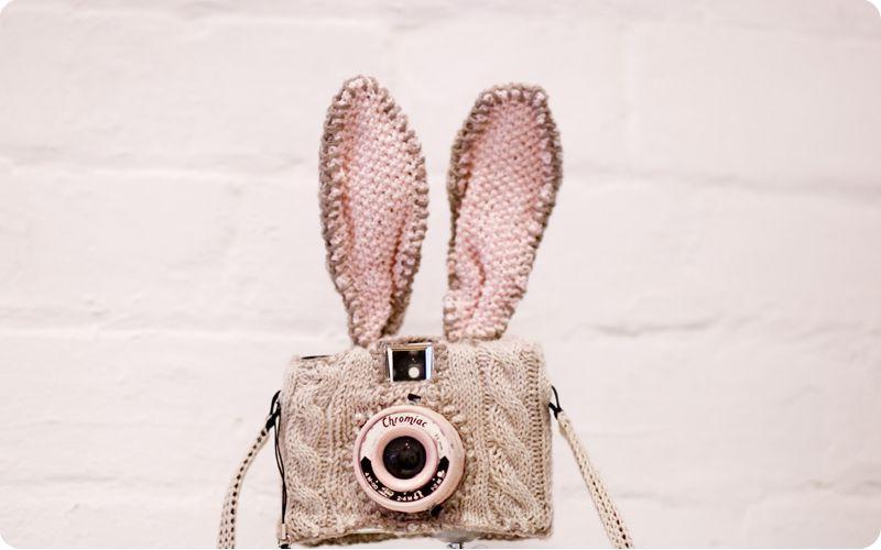 Bunny Cam Cute Diys Camera Shy Baby Bunnies