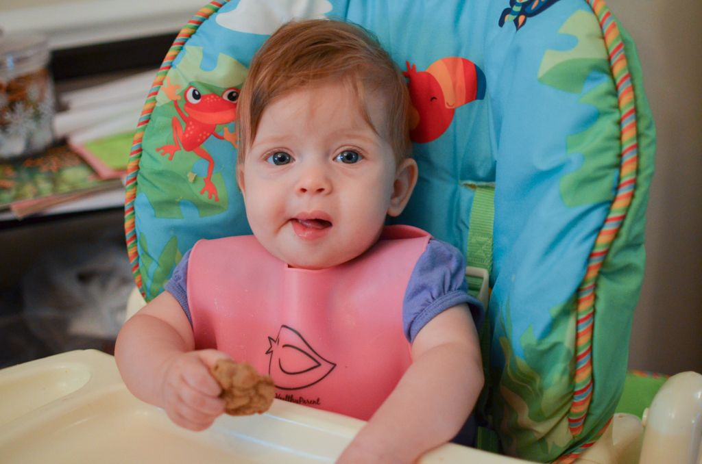 how to make baby oatmeal cereal gerber