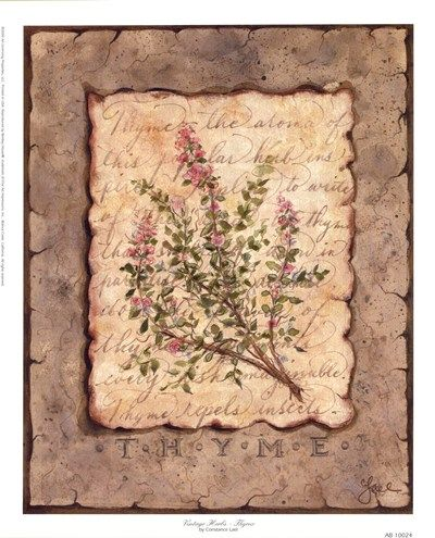 vintage-herbs-thyme-by-constance-lael (400×495)