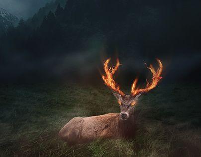 "Check out new work on my @Behance portfolio: ""Burning deer"" http://be.net/gallery/38709011/Burning-deer"