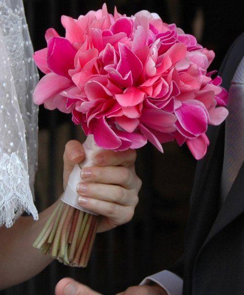 Bouquet Sposa Settembre 2018.Bouquet Di Ciclamini 14 Settembre 2018 Bouquet Di Nozze